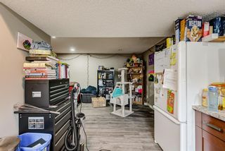 Photo 31: 8516 Bowness Road NW in Calgary: Bowness Detached for sale : MLS®# A1129149
