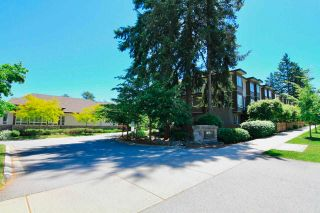 Photo 28: 65 5888 144 STREET in Surrey: Sullivan Station Townhouse for sale : MLS®# R2589743