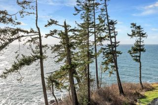 Photo 29: 2476 Lighthouse Pt in : Sk Sheringham Pnt House for sale (Sooke)  : MLS®# 867116
