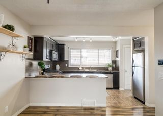 Photo 17: 189 COPPERPOND Road SE in Calgary: Copperfield Detached for sale : MLS®# A1091868