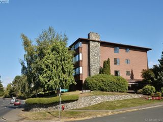 Photo 1: 307 150 W Gorge Rd in VICTORIA: SW Gorge Condo for sale (Saanich West)  : MLS®# 782004