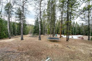 Photo 3: 231167 Forestry Way: Bragg Creek Detached for sale : MLS®# A1111697