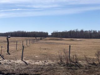 Photo 6: 0 360 Highway in Ste Rose Du Lac: R31 Residential for sale (R31 - Parkland)  : MLS®# 202011131