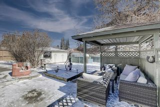 Photo 43: 716 Thorneycroft Drive NW in Calgary: Thorncliffe Detached for sale : MLS®# A1089145