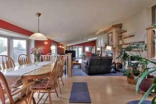 Photo 28: 52117 RGE RD 53: Rural Parkland County House for sale : MLS®# E4246255