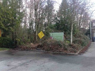 Photo 6: 15864 112 Avenue in Surrey: Fraser Heights Land for sale (North Surrey)  : MLS®# R2554644