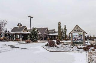 Photo 37: 215 279 SUDER GREENS Drive in Edmonton: Zone 58 Condo for sale : MLS®# E4219586