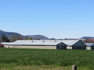 Photo 7: 1160 MARION Road in Abbotsford: Sumas Prairie Agri-Business for sale : MLS®# C8038422