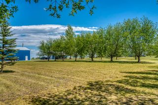 Photo 45: 251046 Rge Rd 263: Rural Wheatland County Residential Land for sale : MLS®# A1117285