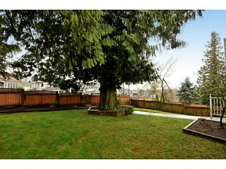 Photo 43: 18055 64TH Avenue in Surrey: Cloverdale BC House for sale (Cloverdale)  : MLS®# F1405345