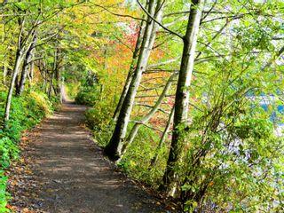 Photo 35: 3107 Elsie Lake Cir in : Na South Jingle Pot House for sale (Nanaimo)  : MLS®# 870572