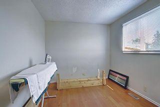 Photo 21: 180 Castledale Way NE in Calgary: Castleridge Detached for sale : MLS®# A1135509