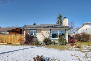 Photo 1: 348 TEMPLETON Circle NE in Calgary: Temple Detached for sale : MLS®# A1090566
