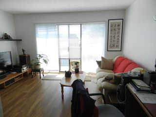 """Photo 3: 313 8031 RYAN Road in Richmond: South Arm Condo for sale in """"Mayfair Court"""" : MLS®# R2601114"""