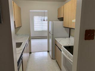 "Photo 4: 218 8411 ACKROYD Road in Richmond: Brighouse Condo for sale in ""LEXINGTON SQUARE"" : MLS®# R2549435"
