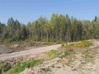 Photo 8: 20035 CARIBOO Highway: Buckhorn House for sale (PG Rural South (Zone 78))  : MLS®# R2499892