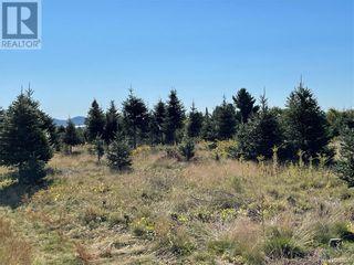 Photo 33: - Saint David Ridge in St. Stephen: Vacant Land for sale : MLS®# NB063465