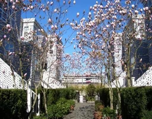 """Main Photo: 669 W 7TH Ave in Vancouver: Fairview VW Townhouse for sale in """"THE IVYS"""" (Vancouver West)  : MLS®# V634857"""