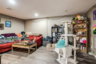 Photo 21: 8516 Bowness Road NW in Calgary: Bowness Detached for sale : MLS®# A1129149