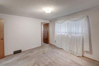 Photo 21: 2740 LIONEL Crescent SW in Calgary: Lakeview Detached for sale : MLS®# C4303561