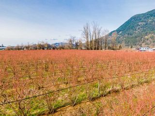 Photo 9: 37424 LOUGHEED Highway: Agri-Business for sale in Mission: MLS®# C8036839