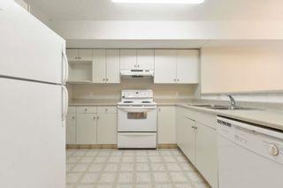 Photo 8: 102 11408 108 Avenue in Edmonton: Zone 08 Condo for sale : MLS®# E4253242