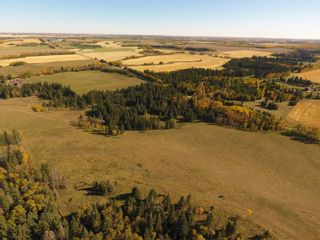 Photo 41: ON Township Road 355A: Rural Red Deer County Land for sale : MLS®# A1039276