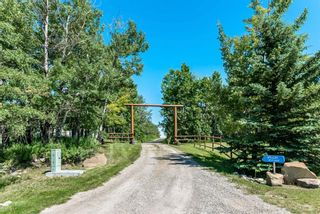 Photo 2: 290034 16 Street W: Rural Foothills County Detached for sale : MLS®# A1065848