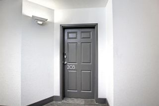 Photo 4: 203 59 Glamis Drive SW in Calgary: Glamorgan Apartment for sale : MLS®# A1149436