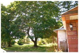 Photo 7: 4820 Northeast 30 Street in Salmon Arm: North Broadview House for sale (NE Salmon Arm)  : MLS®# 10143037