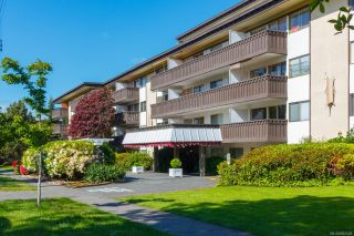 Photo 5: 303 964 Heywood Ave in : Vi Fairfield West Condo for sale (Victoria)  : MLS®# 862438