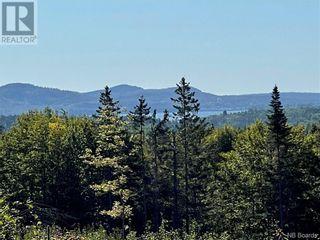 Photo 1: - Saint David Ridge in St. Stephen: Vacant Land for sale : MLS®# NB063465