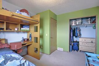 Photo 23: 23 Applecrest Court SE in Calgary: Applewood Park Detached for sale : MLS®# A1079523
