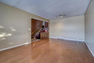 Photo 9: 4 Abergale Way NE in Calgary: Abbeydale Detached for sale : MLS®# A1068236