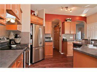 Photo 10: 230 SILVERADO RANGE Place SW in Calgary: Silverado House for sale : MLS®# C4037901