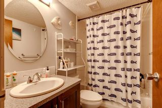 Photo 9: 303 534 20 Avenue SW in Calgary: Cliff Bungalow Apartment for sale : MLS®# A1089552