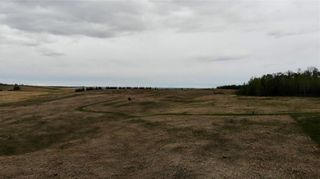 Photo 8: Viewmar Drive: Rural Ponoka County Land for sale : MLS®# C4288523