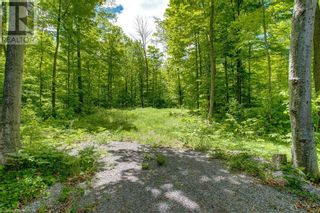Photo 17: 1832 COUNTY RD. 40 Road in Quinte West: Vacant Land for sale : MLS®# 40154512
