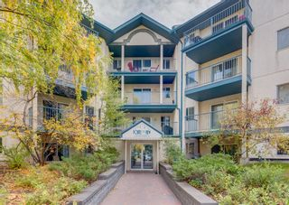 Main Photo: 208 11 Dover Point SE in Calgary: Dover Apartment for sale : MLS®# A1151634