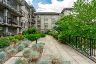 "Photo 20: 302 33898 PINE Street in Abbotsford: Central Abbotsford Condo for sale in ""Gallantree"" : MLS®# R2381999"