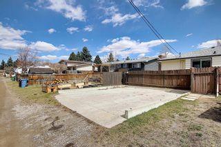 Photo 46: 239 Queen Tamara Way SE in Calgary: Queensland Detached for sale : MLS®# A1100058