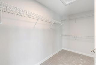Photo 33: 246 West Grove Point SW in Calgary: West Springs Detached for sale : MLS®# A1153490