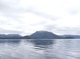 Photo 6: W1/2 SW&NW1/4 Quatsino Sound in : NI Port Hardy Land for sale (North Island)  : MLS®# 866764