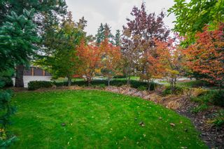 """Photo 46: 2489 138 Street in Surrey: Elgin Chantrell House for sale in """"PENINSULA PARK"""" (South Surrey White Rock)  : MLS®# R2414226"""