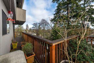 Photo 30: 4147 Cedar Hill Rd in : SE Cedar Hill House for sale (Saanich East)  : MLS®# 867552