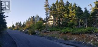 Photo 5: 18-24 Butts Road in Spaniard's Bay: Vacant Land for sale : MLS®# 1234275