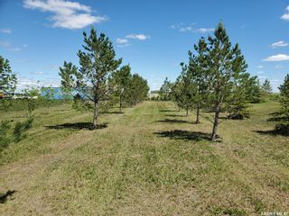 Photo 2: Horsnall Acreage in Moose Jaw: Lot/Land for sale (Moose Jaw Rm No. 161)  : MLS®# SK844416