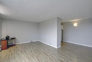 Photo 10: 508 314 14 Street NW in Calgary: Hillhurst Apartment for sale : MLS®# A1117580