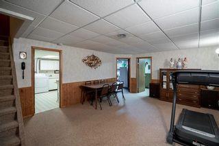 Photo 27: 169 Kildonan Meadow Drive in Winnipeg: Kildonan Meadows Residential for sale (3K)  : MLS®# 202008495