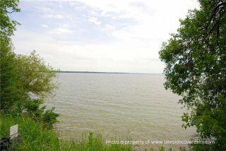 Photo 6: 1283 Ramara County Rd.#47 Road in Ramara: Brechin House (Bungalow) for sale : MLS®# X3424213